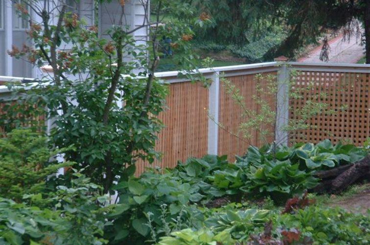 AFC Cedar Rapids - Wood Fencing, 1031 Lattice Fence