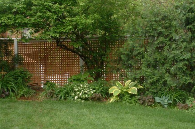 AFC Cedar Rapids - Wood Fencing, 1032 Lattice Fence