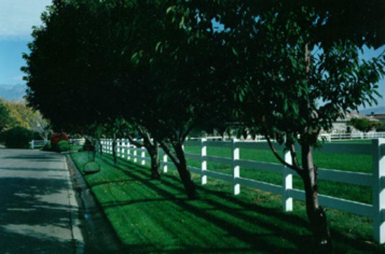 AFC Cedar Rapids - Vinyl Fencing, 3 Ranch Rail (953)