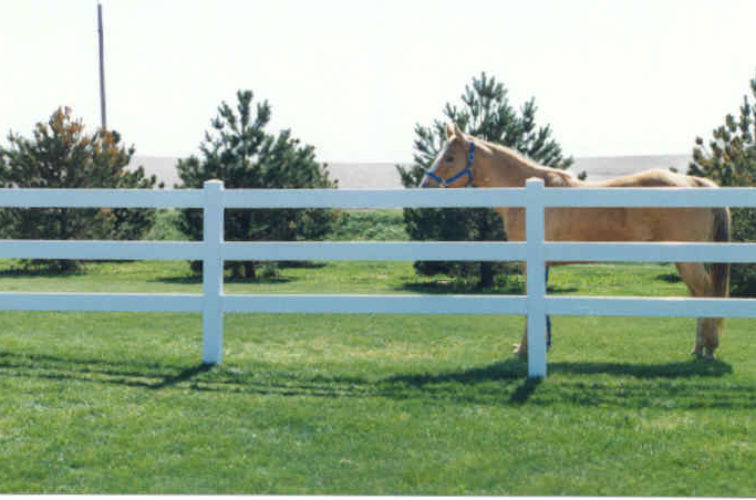 AFC Cedar Rapids - Vinyl Fencing, 3 Ranch Rail (955)