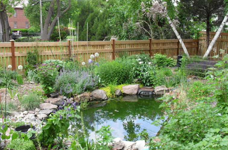 AFC Cedar Rapids - Wood Fencing, Landscaped Backyard